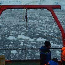 Científicos estudian microalgas para obtener respuestas del cambio climático en la Antártica