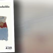 """Crítica a libro """"El origen de la rebeldía"""" de Juan Cristóbal Sotomayor: explosiones ¿imprevistas?"""