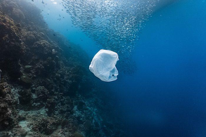 Llaman a los países a sumarse a la lucha contra la contaminación plástica en los océanos y alcanzar un acuerdo global