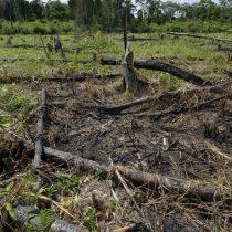 Viviendo a crédito: ¿Qué países están ya sobregirados con la naturaleza?