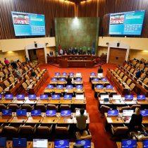 A contrapelo del proyecto del Gobierno: Cámara de Diputados da luz verde apostnatal de emergencia y pasa al Senado
