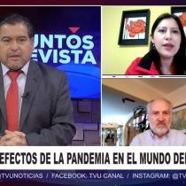 Puntos de vista | Teletrabajo: balance de la nueva normativa desde su entrada en vigencia en Chile