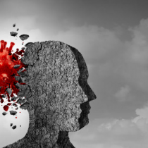 Las insuficiencias de una mirada de la salud mental en la preparación de la respuesta ante el COVID-19