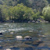La fragmentación de los sistemas fluviales andinos chilenos aumentará severamente en un futuro cercano