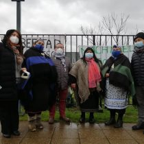 Diputados de oposición visitaron al machi Celestino Córdova y piden al Gobierno acoger sus demandas