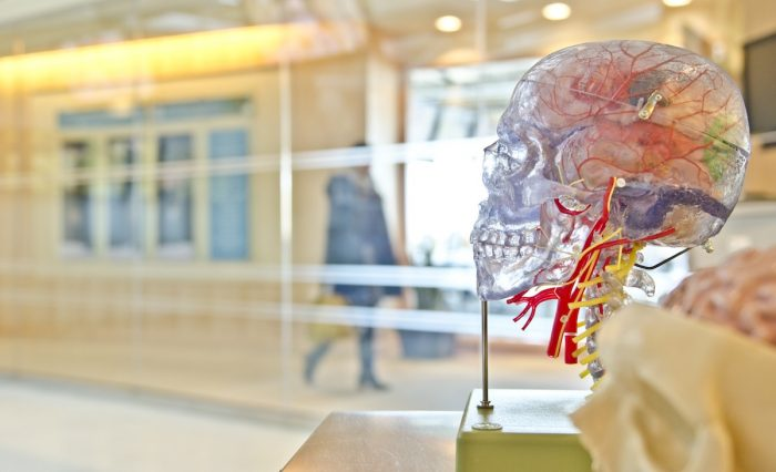 Temor a coronavirus disminuye drásticamente atenciones de urgencia de accidentes cerebrovascular
