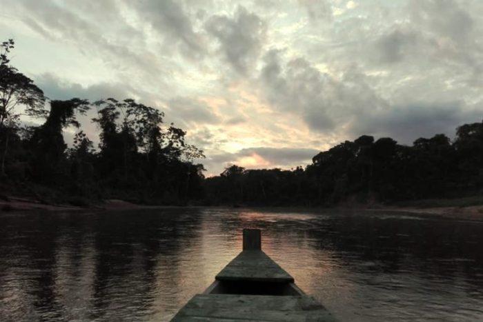 Día Internacional de los Parques Nacionales: tres estrategias para proteger la biodiversidad