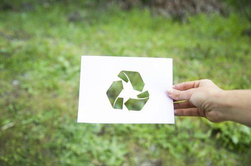 ¿Es suficiente la sustentabilidad para superar nuestra crisis climática? Tiempo para repensar todo