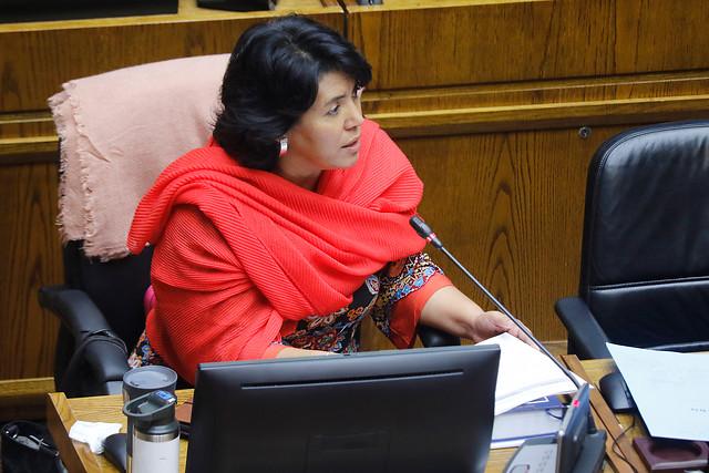"""Senadora Provoste (DC) emplaza a ministro Figueroa por reporte de la ONU sobre Educación y COVID-19: """"Lea el informe completo y no el resumen que le preparan"""
