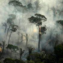 Preocupante escenario para la Amazonia brasileña: incendios aumentaron en julio