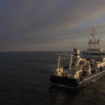 Película chilena 'Atacamex: explorando lo desconocido' es nominada en el UNOFEX International Film Festival 2020