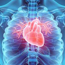 """Cardiólogo: """"El Covid-19 daña al corazón independiente de lo grave que sea la infección"""""""