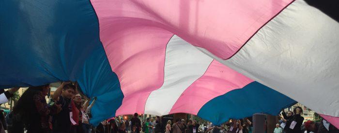 Dirección del Trabajo lanza dictamen para que empresas resguarden los derechos en espacios laborales de personas trans