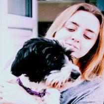 Desconfinamiento: cómo preparar a tu perro para quedarse solo en casa nuevamente