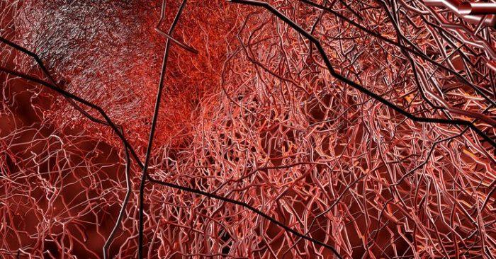 ¿Es COVID-19 una enfermedad vascular?