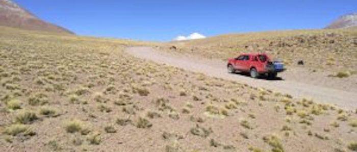 Importantes hallazgos sobre las comunidades de bacterias de plantas nativas de los altiplanos andinos chilenos