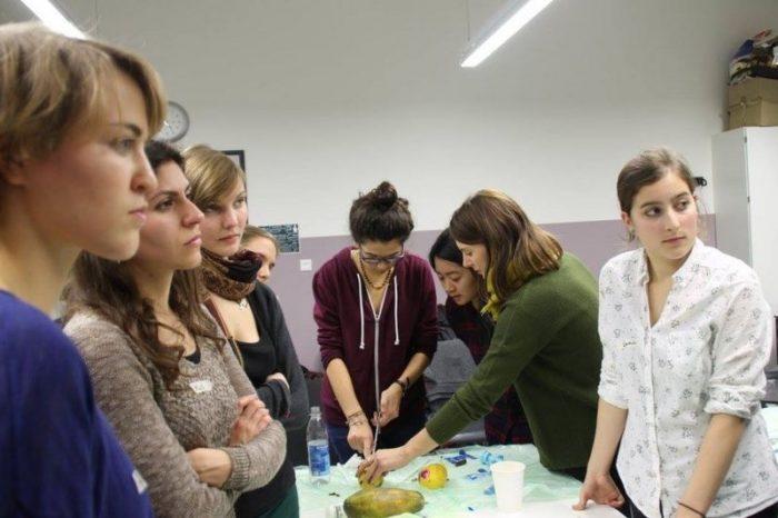 Los riesgos de que cada vez menos doctores sepan practicar un aborto en Alemania (y la ingeniosa solución de unos estudiantes de Medicina)