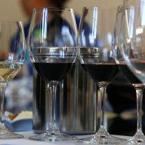 Dos viñas chilenas escogidas entre las 100 mejores por revista especializada norteamericana