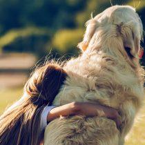 La llegada de la primavera también afecta a los perros