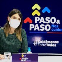 Fiestas Patrias: Minsal prohíbe fondas y viajes interregionales, pero autoriza reuniones familiares