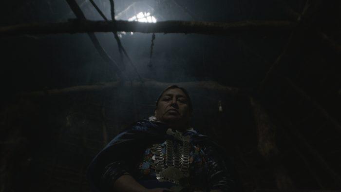 """""""Dominio vigente"""": la película chilena destacada en Alemania que narra la disputa por la tierra en La Araucanía"""