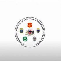 """""""No tiene relación alguna"""": Carabineros, PDI y Fuerzas Armadas se desmarcan de gremial que usa sus logos en franja del """"Rechazo"""""""