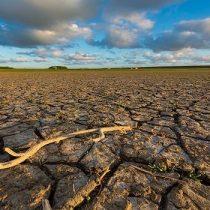 Libro de la Sociedad Civil por la Acción Climática revisa compromiso del Gobierno de Chile con el cambio climático