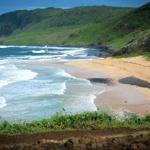 Una isla de Brasil sorprende al anunciar que solo recibirá turistas que hayan tenido Covid-19
