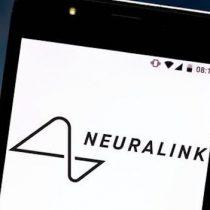 La neurociencia sigue conociendo mejor el cerebro que Elon Musk