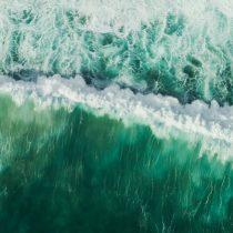 Planeta océano: el corazón líquido que nos mantiene vivos