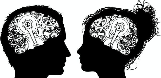 Los algoritmos dicen que hay cerebros masculinos y femeninos, pero quizá confundan el sexo con el tamaño