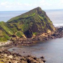 """Senadores Harboe y Navarro emplazan al Gobierno por venta de Isla Guafo: piden que sea declarada como Área Protegida y que """"sea expropiada"""""""