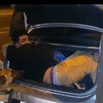 Hombre es detenido luego de intentar evadir cordón sanitario e ingresar a Coquimbo en el maletero de un auto