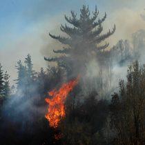 Gobierno declara estado preventivo de emergencia en regiones afectadas por incendios forestaleshasta mayo 2021