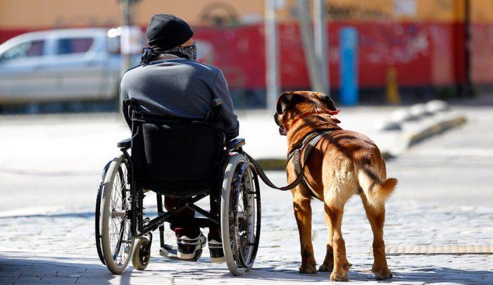Entregan resultados del Primer Estudio Comunal de Discapacidad