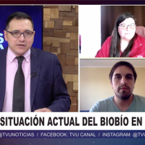 Puntos de vista | Análisis de la pandemia en el Biobío