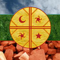 Derechos lingüísticos de los pueblos indígenas y Nueva Constitución