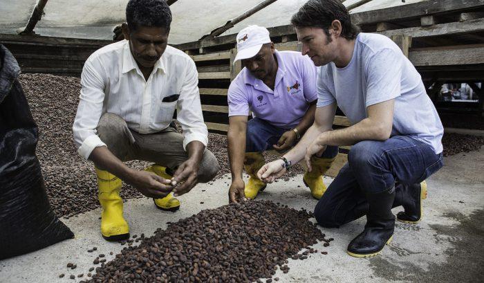 Tour virtual permite conocer sobre la historia del cacao y la fabricación del chocolate