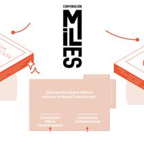 """Corporación Miles Chile explica """"con peras y manzanas"""" la importancia de una nueva Constitución"""