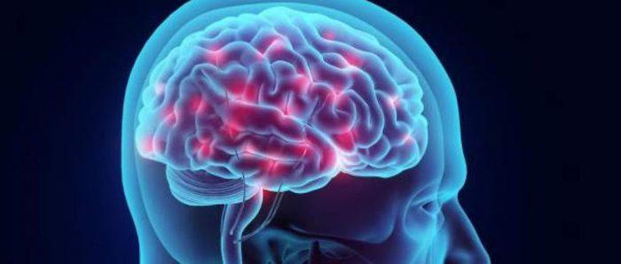 """Los recuerdos crean una """"huella neuronal"""" en el cerebro que define la individualidad frente a una experiencia en común"""