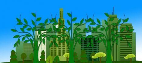 Regiones chilenas muestran bajo desempeño en Índice que midió desarrollo medioambiental