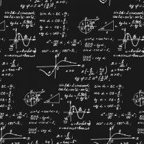 Los modelos matemáticos no predicen el futuro, pero ayudan a entenderlo