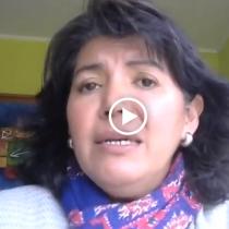 """Yasna Provoste sobre escaños reservados para Pueblos Originarios: """"Existe un poder representado en el Parlamento que le molesta"""""""