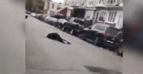 Se desata ola de violencia en Filadelfia tras nuevo asesinato a ciudadano afroamericano en manos de la policía