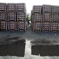 Tras confirmación de recuperación económica en China, cobre llegó a su nivel más alto en más de dos años