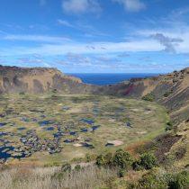Plantan por primera vez cepas ancestrales y del continente para producción de vinos en Isla de Pascua