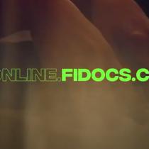 Festival Internacional de Documentales de Santiago (FIDOCS) vía online
