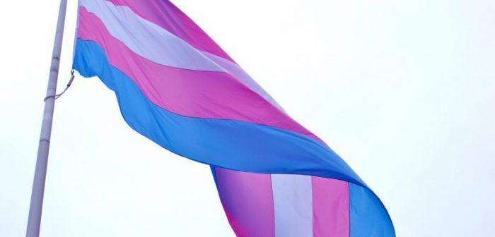 Corte Suprema ordena a Isapre Colmena dar cobertura a cirugía de readecuación corporal a mujer trans
