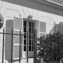 Fundación Jaime Guzmán sale al paso de las críticas por millonarias asesorías a diputados UDI y asegura que