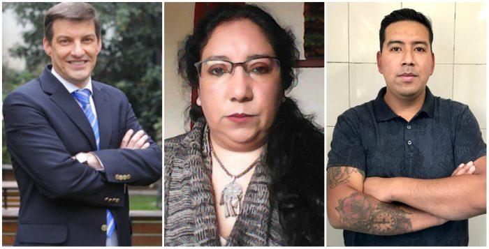 Stingo, Vidal y Lepin Aniñir: RD oficializa a los tres primeros nombres de independientes en su elenco a la Convención Constitucional